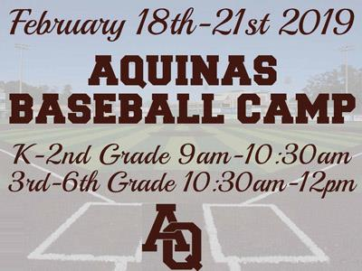 Aquinas Baseball Camp