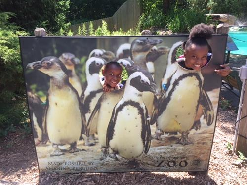 Penguin photo op
